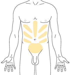 Fettabsaugung | Liposuktion